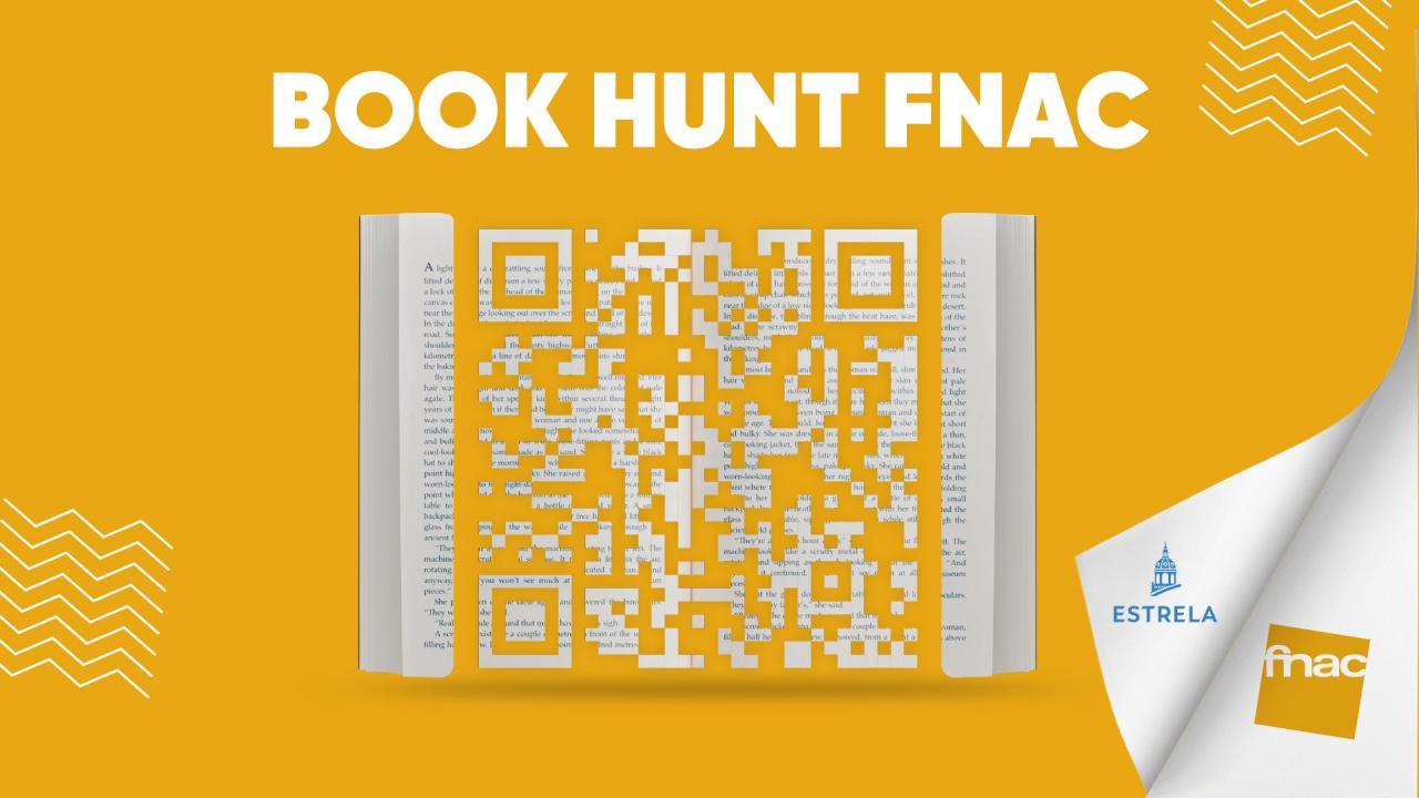 Book Hunt FNAC